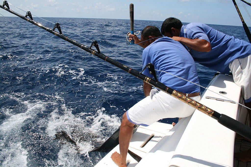 Maldives Fishing